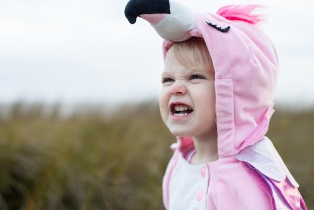angry little flamingo girl